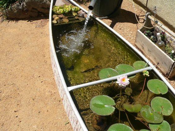 Creative Pond - 3