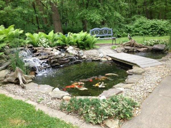 Koi and Pond Garden Installation 1