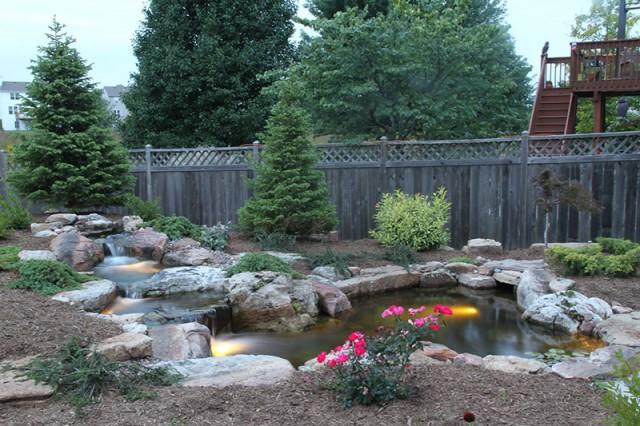 Koi and Pond Garden Installation 2