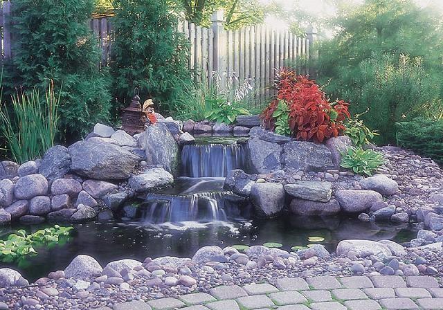 Koi and Pond Garden Installation 3