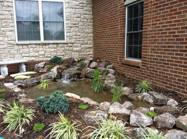 Koi and Pond Garden Installation 4