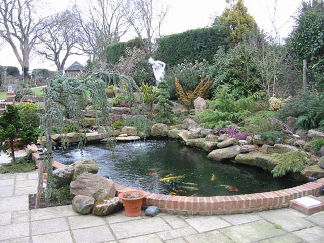Large Pond 1