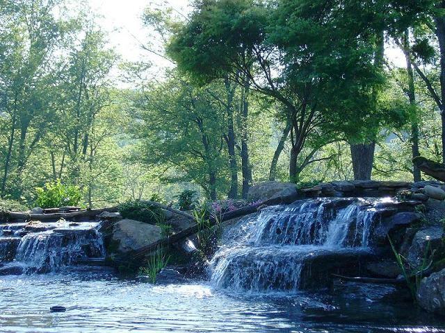 Large Pond 3