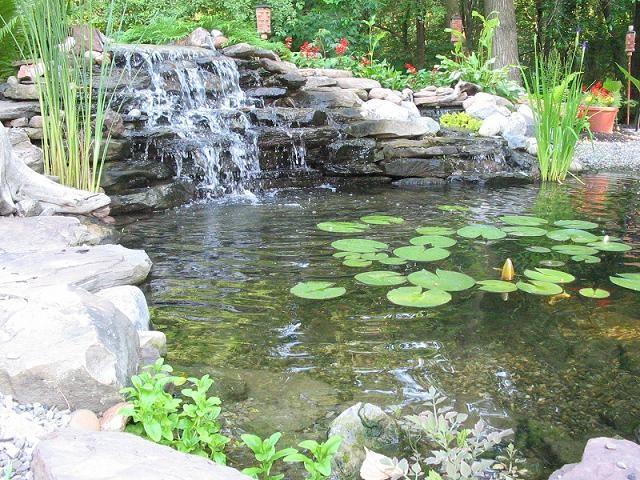 Medium Pond 1