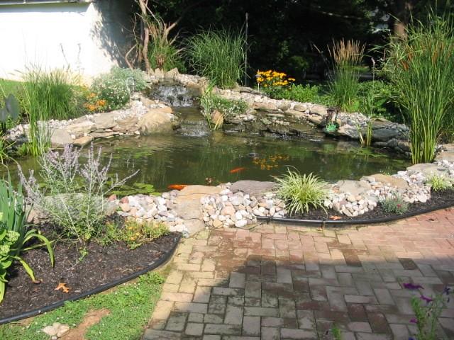 Medium Pond 3