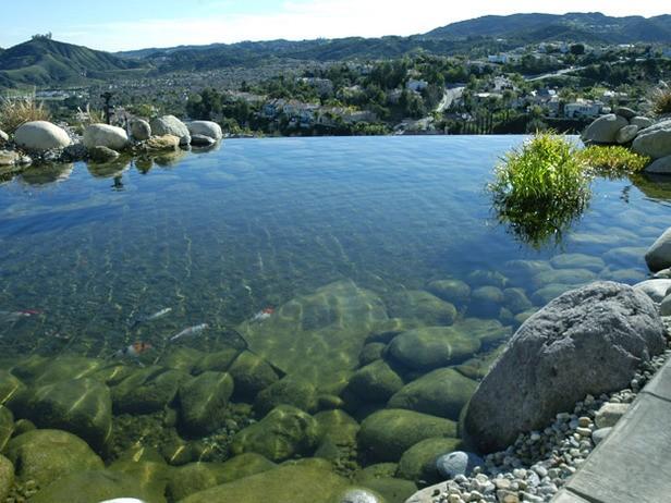 Medium Pond 6
