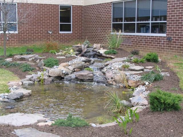 Medium Pond 7