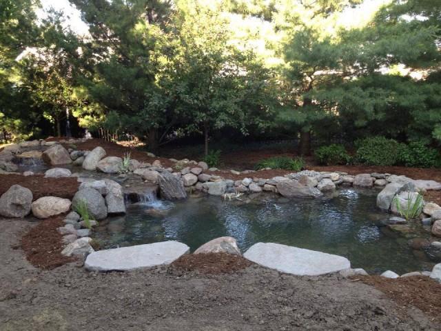 Medium Pond 9