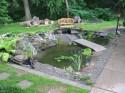Medium Pond Designs