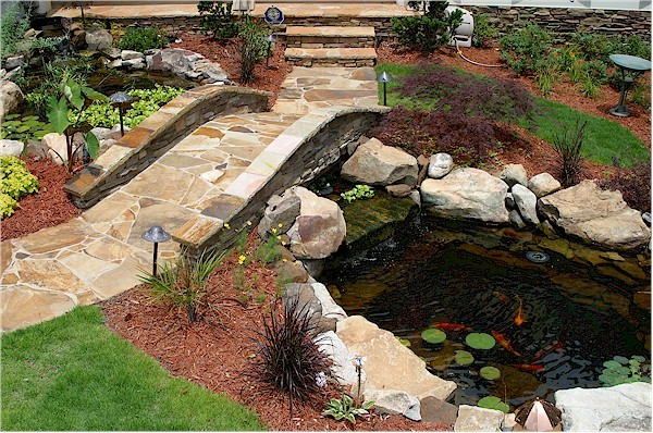 Small Ponds - 1