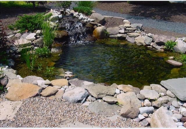 Small Ponds - 2