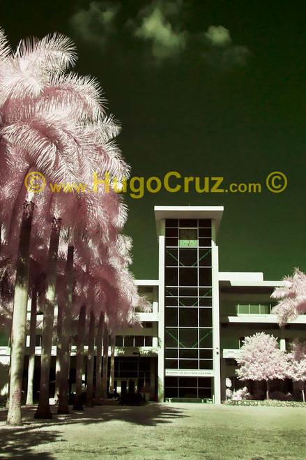 """Dauer Clock Tower"" ● Infrared Photography"