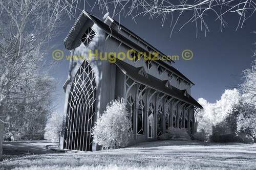 """Baughman (Blue)"" ● Infrared Photography"