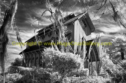 """Baughman Sanctuary"" ● Infrared Photography"