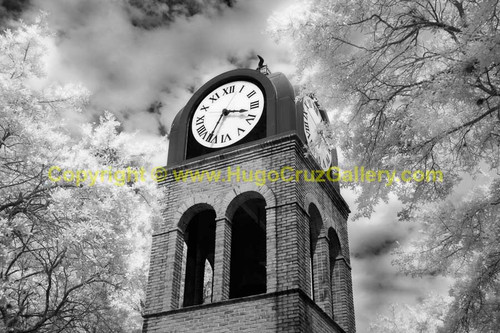 """""""Time Keeper"""" ● Infrared Photography"""