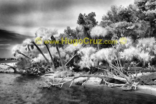 """Atsena Otie Shore"" ● Infrared Photography"