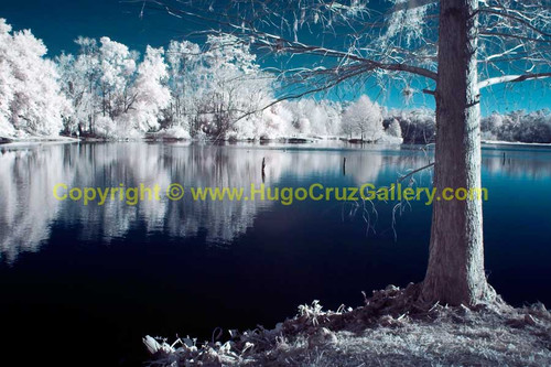 """Still Serenity"" ● Infrared Photography"