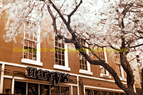 """Harry's"" ● Infrared Photography"