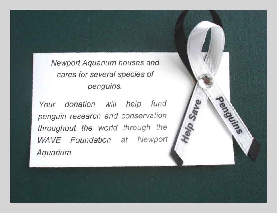 help-save-penguin-pins-with-card-b.jpg