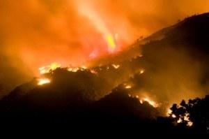 wildfire-night-small.jpg