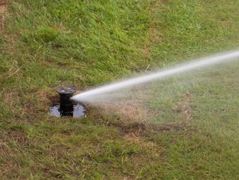 Sprinkler on Croquet Court