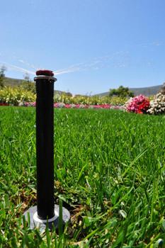 Hunter Pressure Regulated Spray Bodies 2.1 bar