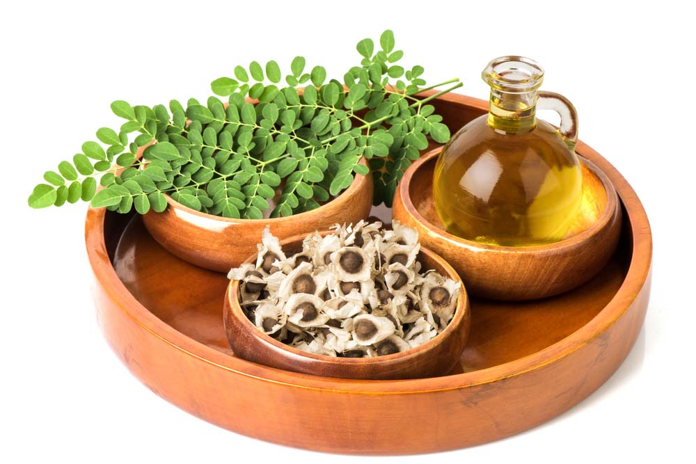 moringa-oil-leaves-seeds.original.jpg