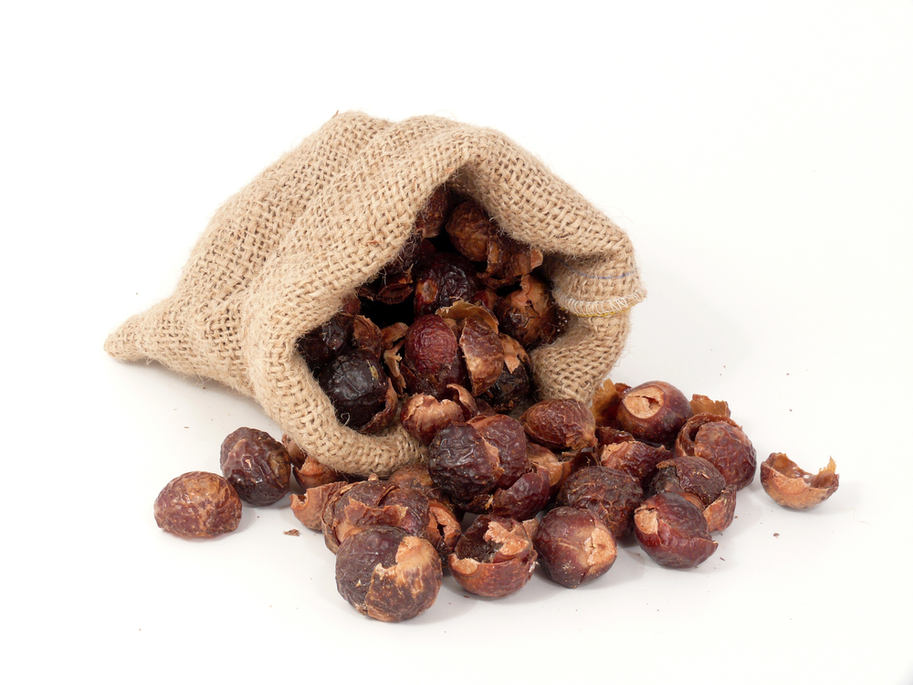 soap-nuts-in-canvas-bag.jpg