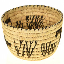 Papago Tohono Indian Basket