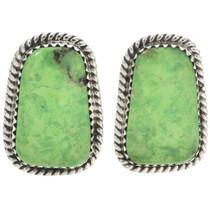 Green Turquoise Stud Earrings 28568