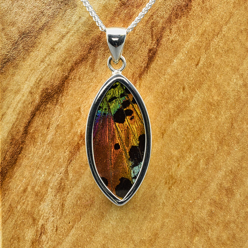 Medium Marquis Madagascan Sunset Moth Sterling Bezel Pendant