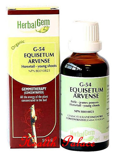 HerbalGem Gemmotherapy G54 Equisetum arvense 15 ml