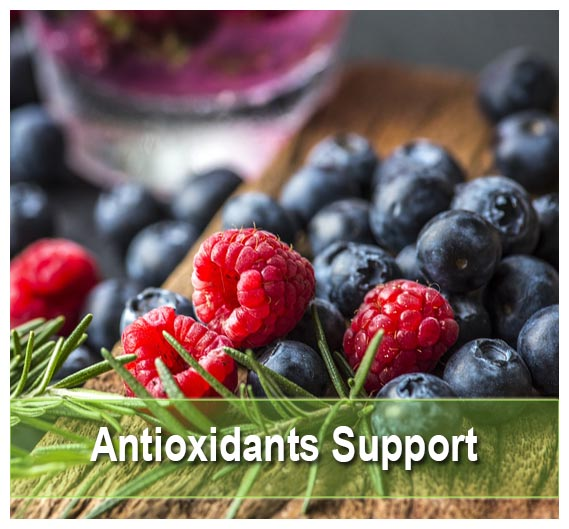 Buy  the Best Antioxidants at Health Palace
