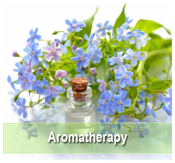 Find Aromatherapy supplements on Health Palace