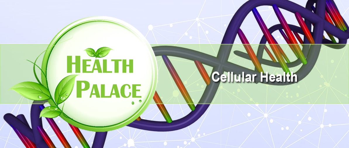 buy-the-best-supplements-to-protect-genes-at-healthpalace.ca.jpg