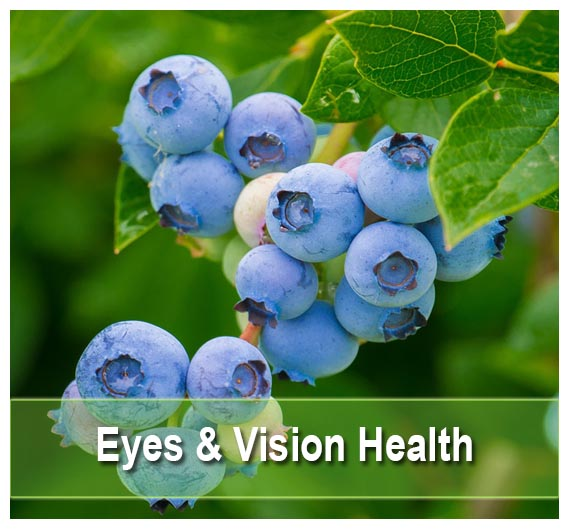 Find Natural Eyes & Vision Health Supplements
