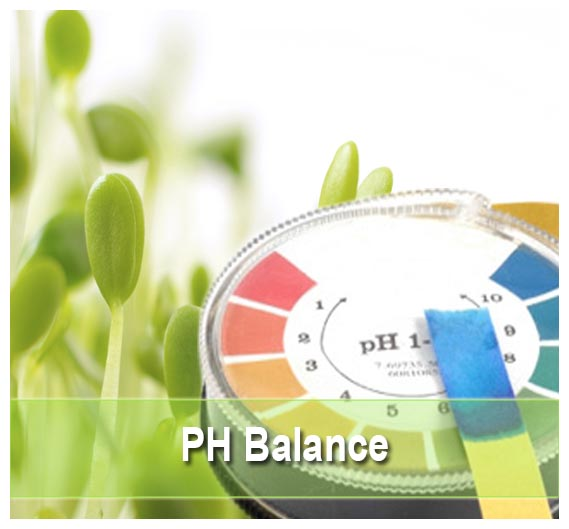 PH Balance  Supplements on Health Palace