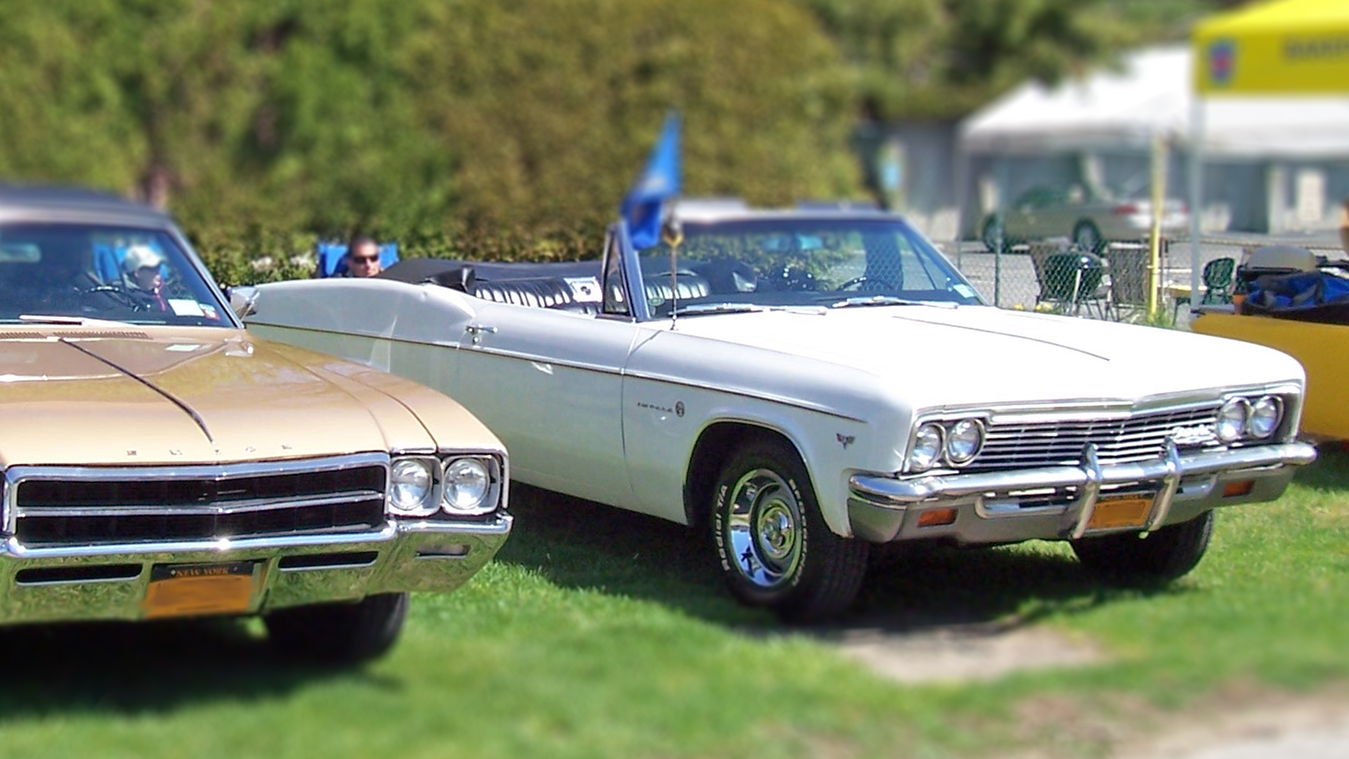 Motor Parkway Memories