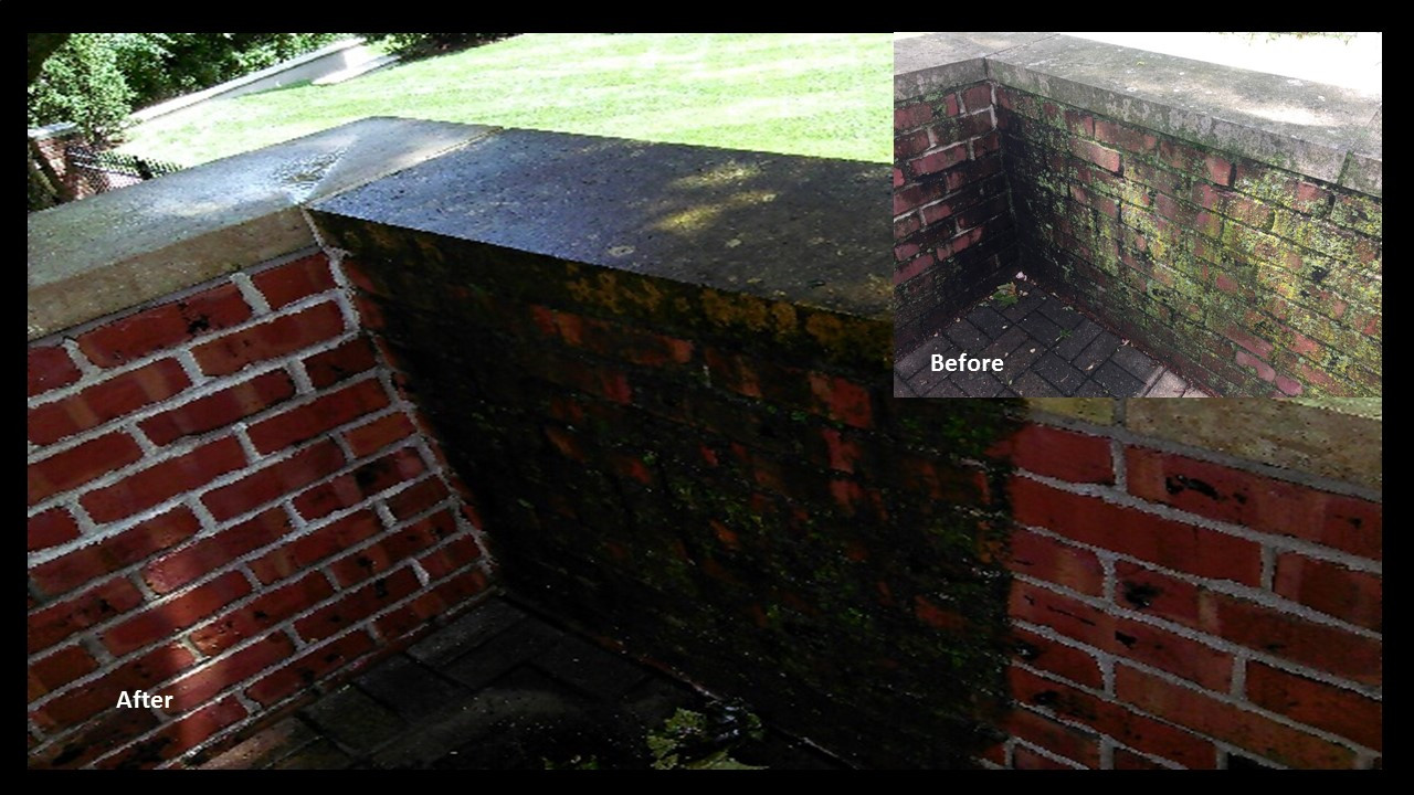 SealGreen Mold and Mildew Cleaner used to clean a clay brick wall.