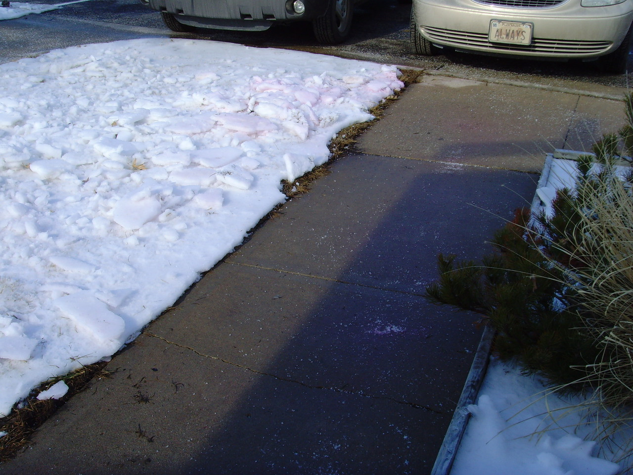 Snow And Ice Melter Pet People And Plant Safe Does Not
