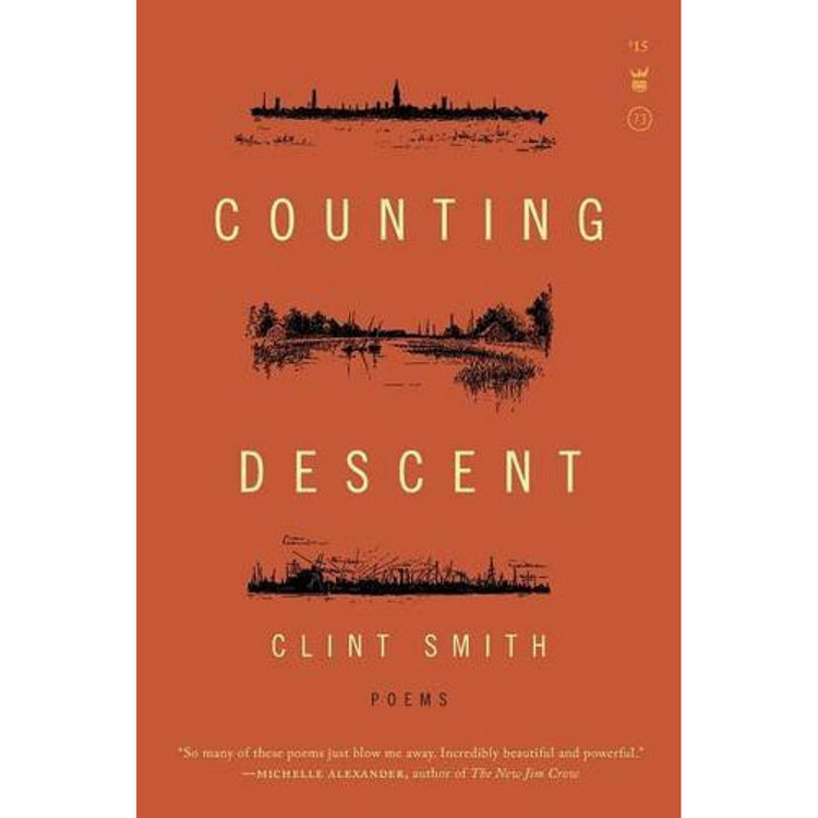 Counting Descent book cover