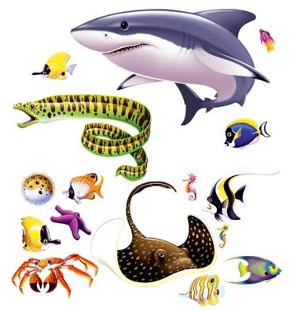 Marine Life Props