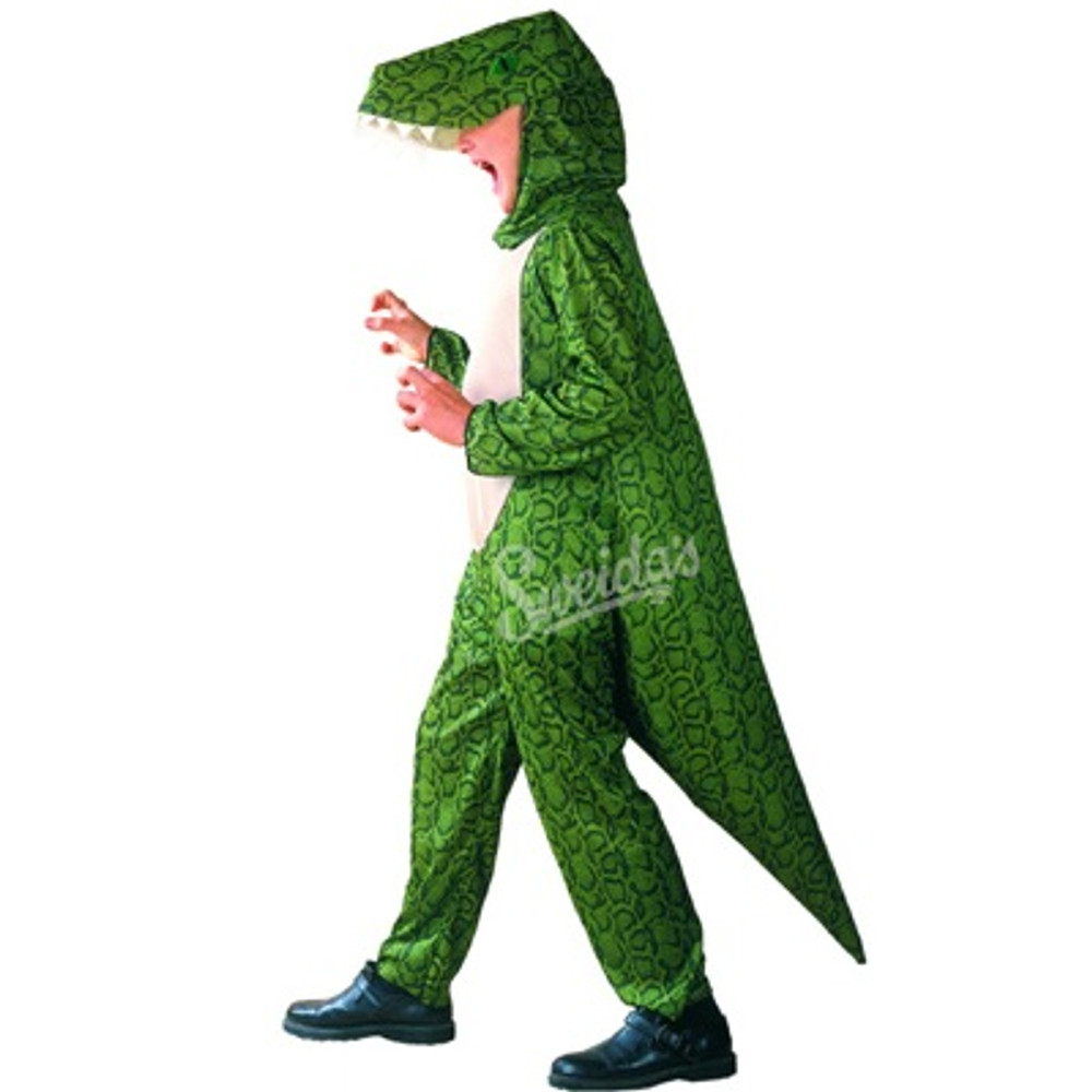 Dinosaur Childrens Costume