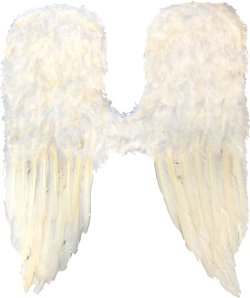 Angel Wings Large Feather