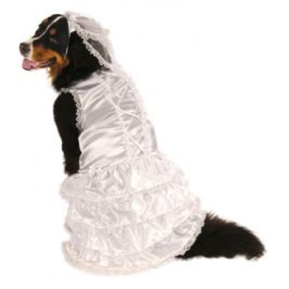 Bride Dog Pet Costume