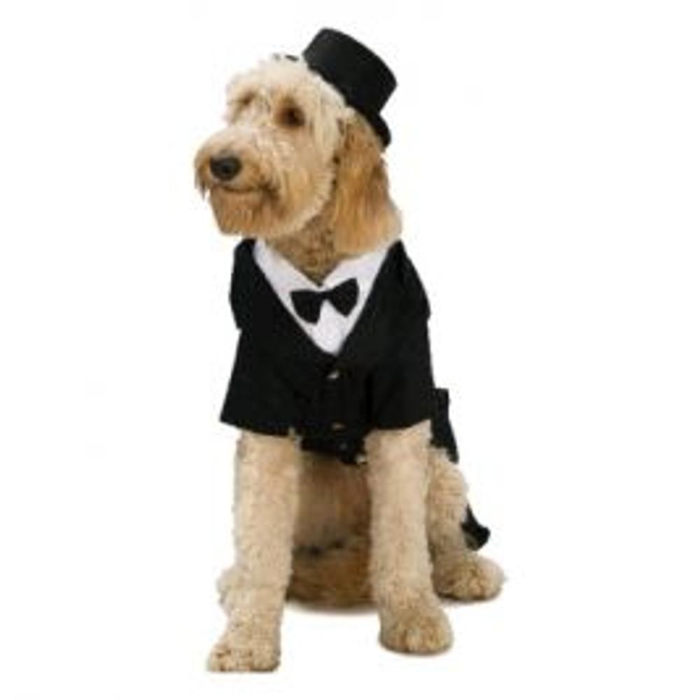 Top Hat Pets Hat