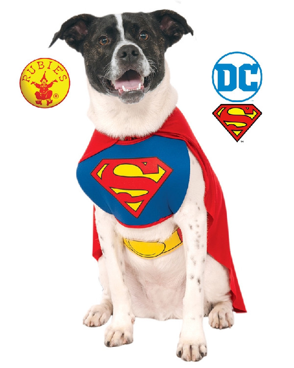 Superman Pet Dog Costume