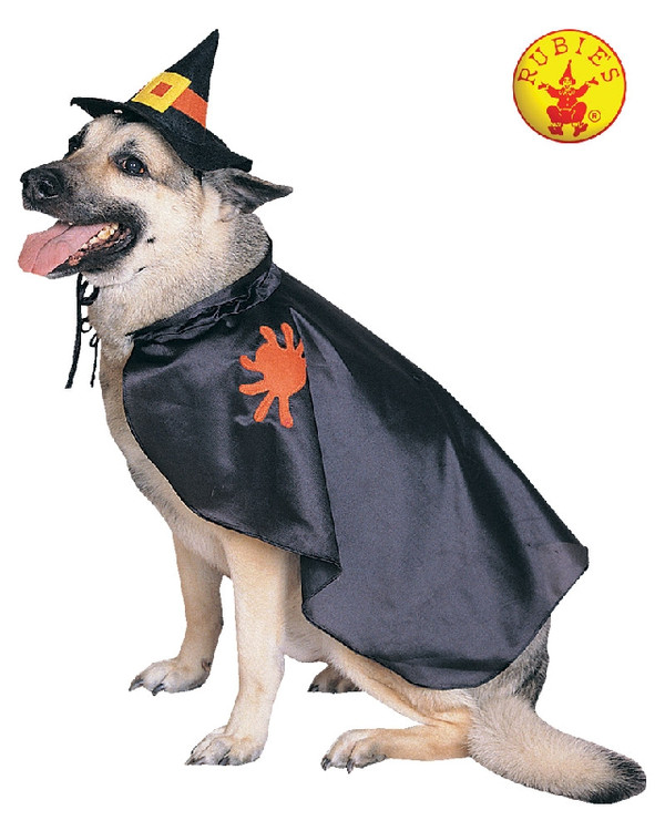 Witch Pet Dog Costume