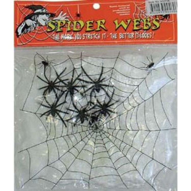 Spider Web (6 Spiders)