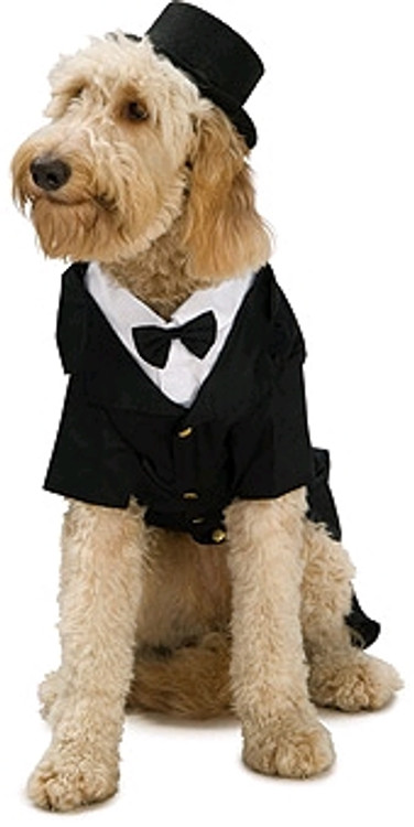 Dapper Dog Tails Pet Costume